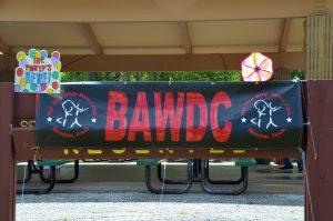 BAWDC Picnic